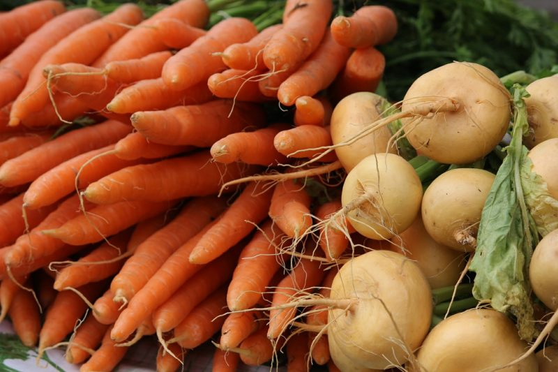Best Easy To Grow Fall Vegetables To Plant In September