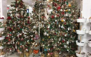 Best Christmas Trees in Charlotte from Blackhawk Hardware
