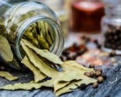 3 Ways to Preserve Herbs and 1 That You Shouldn't Try