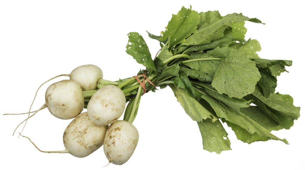 Turnips can be planted in late winter / early spring!