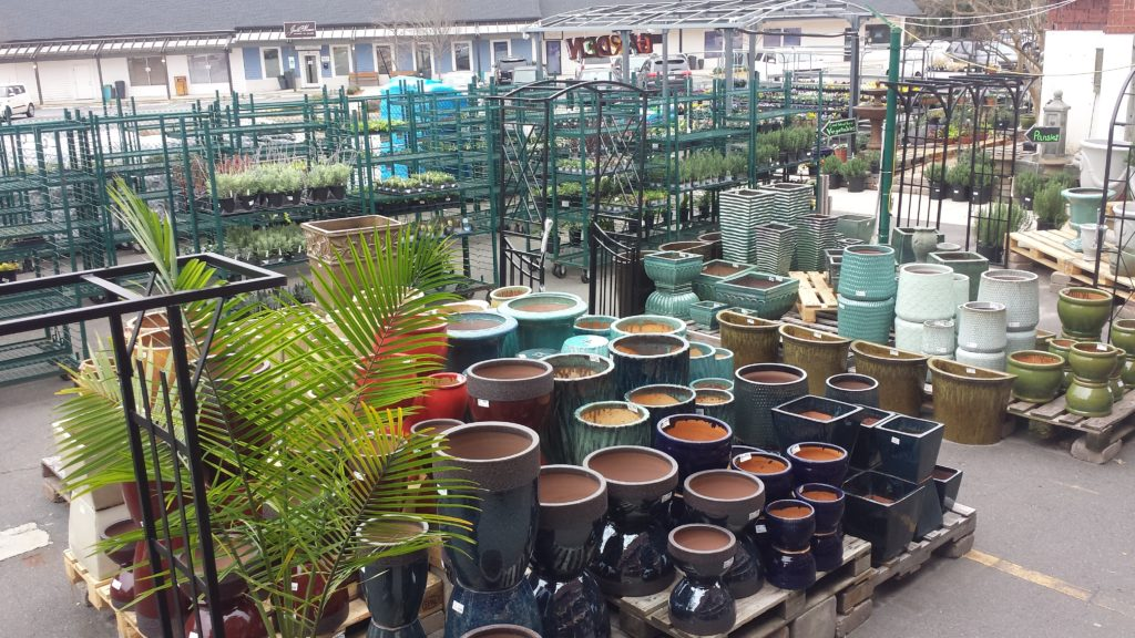 Containers are stunning design elements for your patio and yard!