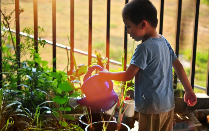 May Gardening To Do List For Charlotte, NC